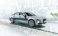 ドイツ高級3ブランドの中国販売、アウディが首位…4月 画像