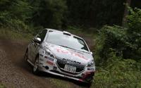 【全日本ラリー 第5戦】プジョー 208 GTi、荒れた路面に苦しみリタイア 画像