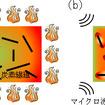 熱硬化性CFRPの加熱処理プロセスのイメージ