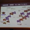 新興国の二輪車戦略