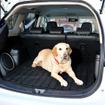 大型犬のマリアもゆったりリラックスできる十分なスペースのラゲッジ