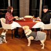 レストラン「ラ・テラス」でディナー。床にはリードフックが備わっているが、中小型犬でカートが必要な場合はフロントでエアーバギーを貸してくれる(無料)
