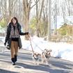 自然の空気を味わいながらゆっくりとお散歩(八ヶ岳わんわんパラダイス)