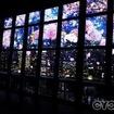東京タワー、夜桜のプロジェクションマッピングで一足早いお花見を楽しむ