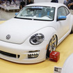 Alpil The Beetle-RS