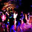 夜中の公園道を彩る