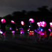 ピンクに光るアフロで決めたグループ