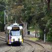 Melbourne Zoo駅付近の専用軌道を眺める。この電車はWest Coburg方面(Route 55)へと走るZ-class。