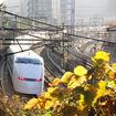 東京都品川区の権現山公園付近を行く300系。