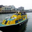 佐世保港クルーズに就く安栄丸水産の「ばらもん」(19トン、定員95人)