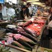 塩サケは1尾5,000円程度から