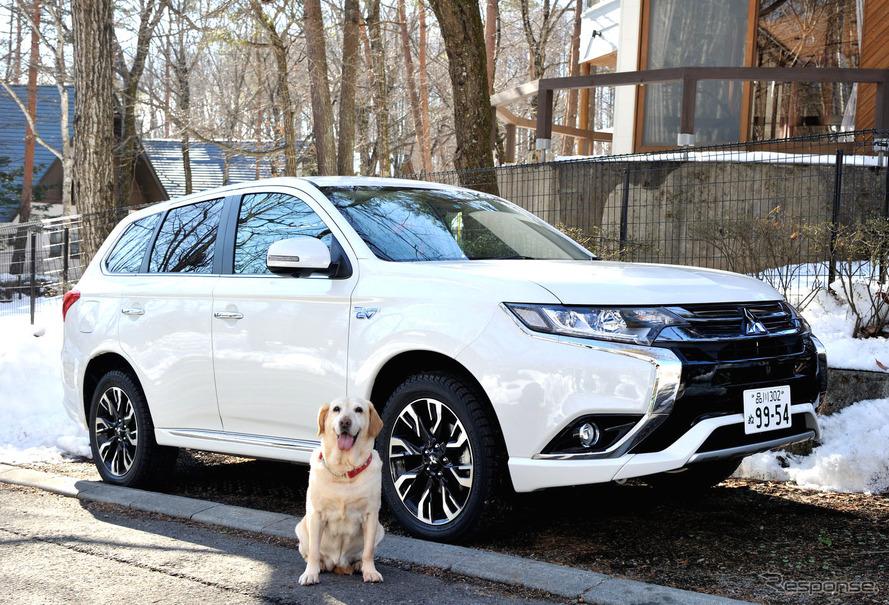 三菱 アウトランダーPHEVと自称自動車評論家犬のマリア