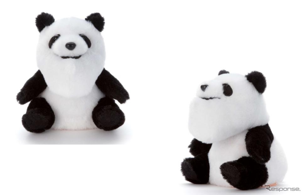 シャクレルプラネットシャクレルミミクリー/パンダ