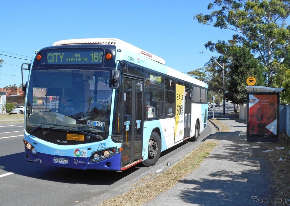 シドニー近郊はバスが縦横無尽に走り回っていてとても便利に移動できる。