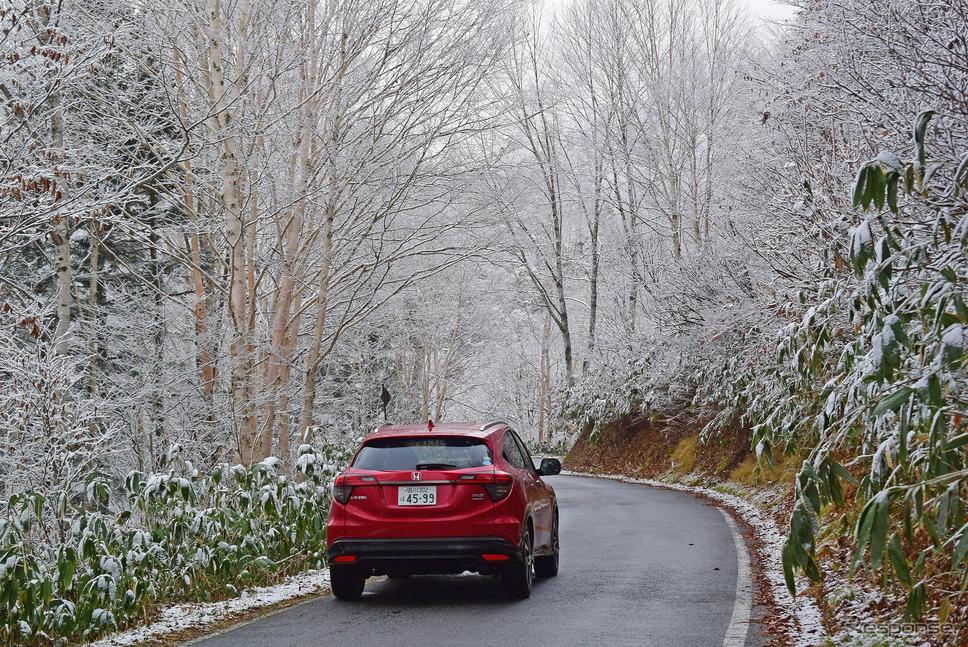 1週間前はブナ、シラカバが金色の紅葉のトンネルを作っていたが、すでに雪化粧をまとっていた。翌日から半年以上にわたる長い長い冬季通行止が始まる。